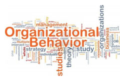 Management-V-(Fundamentals-of-Organizational-Behavior)