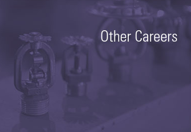 Other Careers